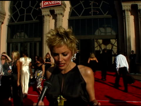 sharon stone at the 2004 emmy creative arts awards red carpet at the shrine auditorium in los angeles, california on september 12, 2004. - emmy awards stock videos & royalty-free footage