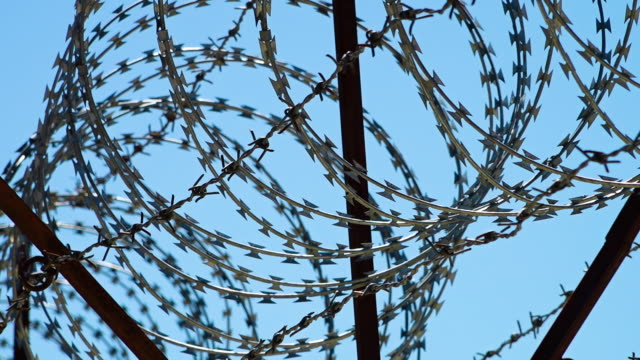 sharp barbed wires - military private stock videos & royalty-free footage