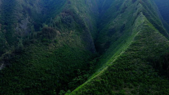 sharp spines of mountains on maui island full of vegetation - isole hawaii video stock e b–roll