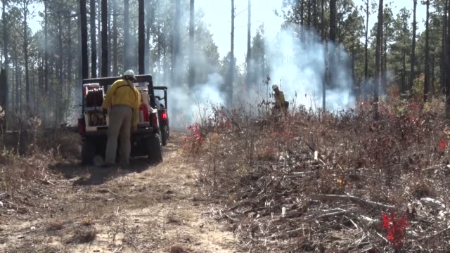 Shaw Wildland Support and Shaw Airmen recently began the process of prescribed fires on Poinsett Electronic Combat Range The fires will continue...