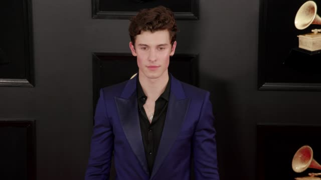 stockvideo's en b-roll-footage met shawn mendes at the 61st grammy awards arrivals at staples center on february 10 2019 in los angeles california editorial - grammy awards