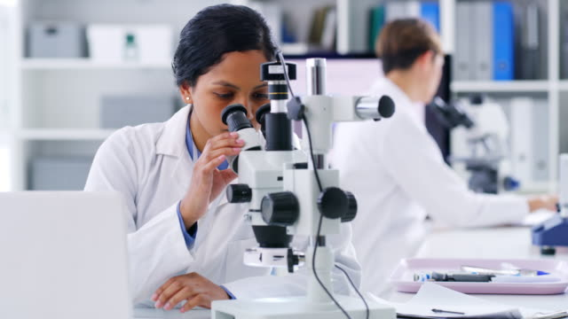she has a lot to consider in her latest discovery - pathologist stock videos & royalty-free footage