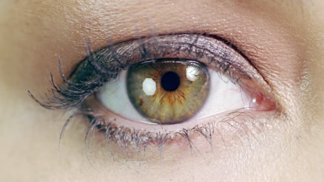 she has hypnotising hazel eyes - eyelid stock videos & royalty-free footage