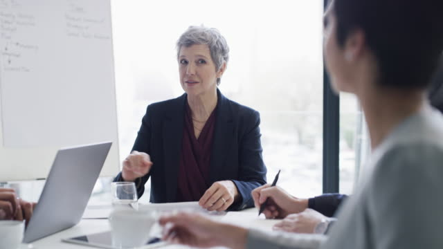 vidéos et rushes de elle possède l'expertise nécessaire pour mener son équipe à la grandeur - femme d'affaires
