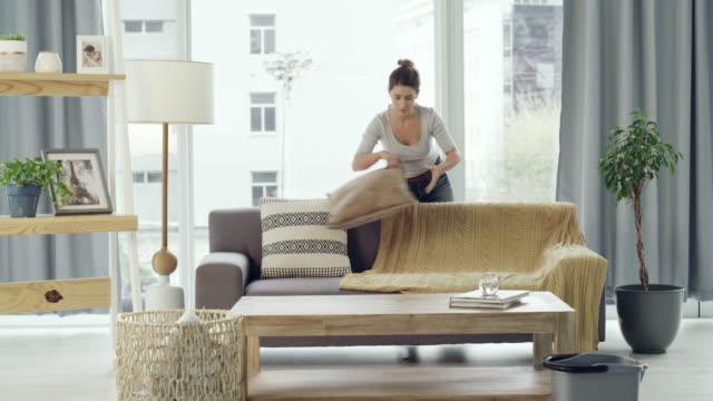 彼女はきちんとしたきちんとしたリビングルームが好きです - 片付いた部屋点の映像素材/bロール