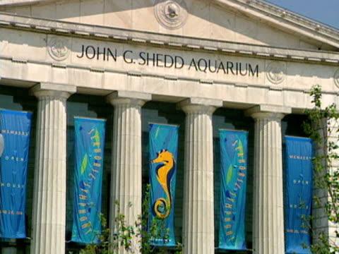 vídeos de stock e filmes b-roll de shedd aquarium in chicago on march 18 2003 - aquário john g shedd