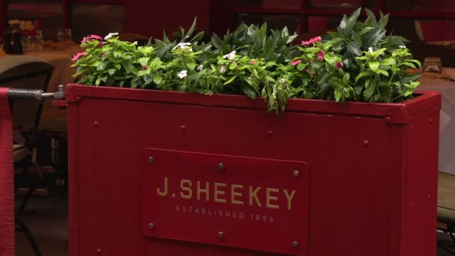 j sheekey exterior views – daytime general view celebrity hotspots on august 12 2019 in london england - crustacean stock videos & royalty-free footage