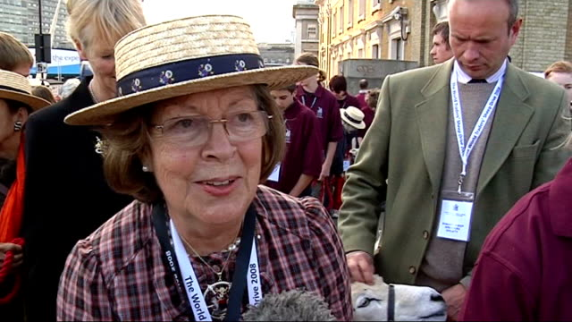 sheep cross london bridge to raise money for charity company of pikemen lined up to escort the sheep over the bridge pat alston interview sot talks... - enacting stock videos & royalty-free footage