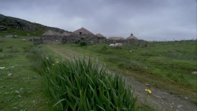 sheep graze in a pasture near black house village in gearrannan scotland. available in hd. - isole ebridi video stock e b–roll