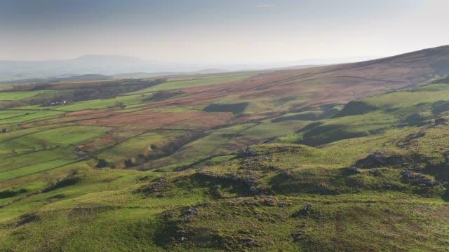Grazende schapen het Land in de buurt van Malham, Noord Yorkshire - Drone Shot