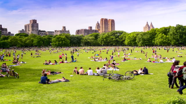 TIME LAPSE, Sheep Meadow, Central Park, New York City