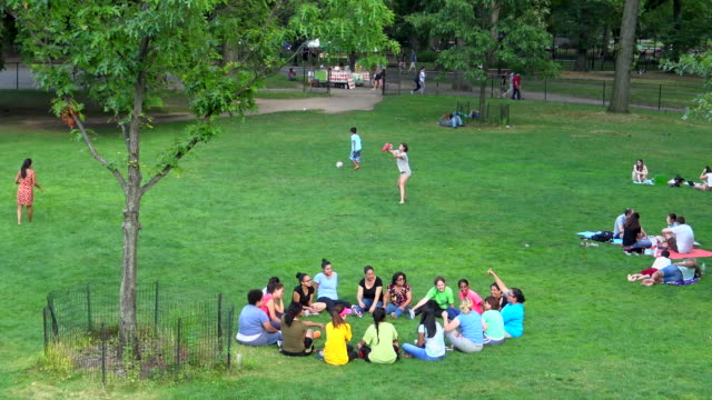sheep meadow, central park, new york city - sheep meadow central park stock videos and b-roll footage