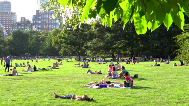 sheep meadow, summer time, central park, new york city - lying down stock videos & royalty-free footage