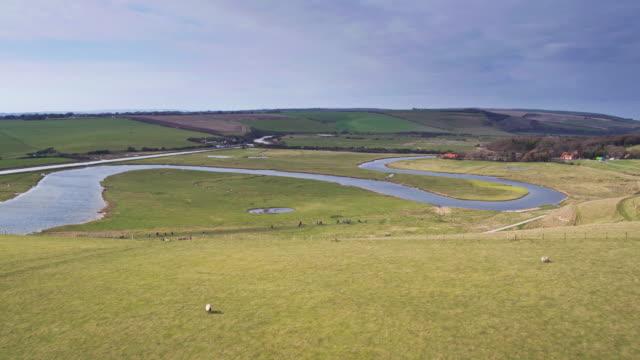 サウス ・ ダウンズ - 空中ショットの羊 - サウスダウンズ点の映像素材/bロール