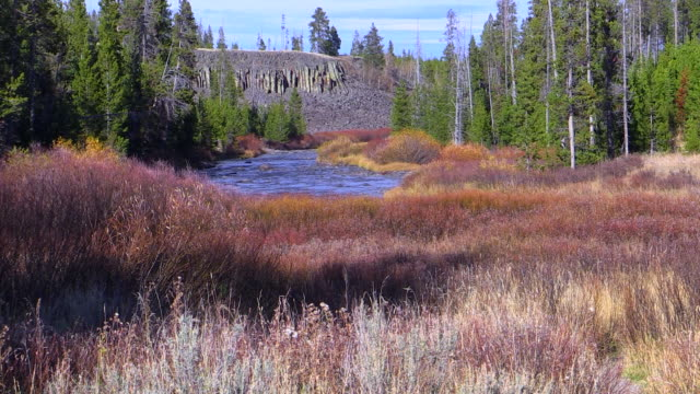 sheepeater cliffs and gardner river, yellowstone national park, wyoming - river yellowstone stock videos and b-roll footage