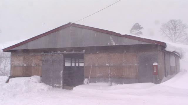 Sheepfold In Snow