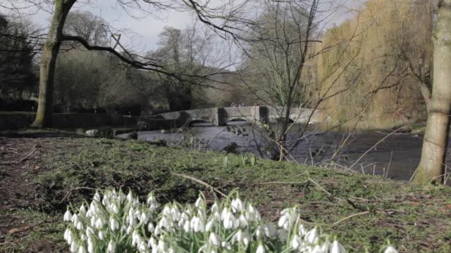 sheepwash bridge, ashford in the water, derbyshire, england, uk, europe - derbyshire stock-videos und b-roll-filmmaterial