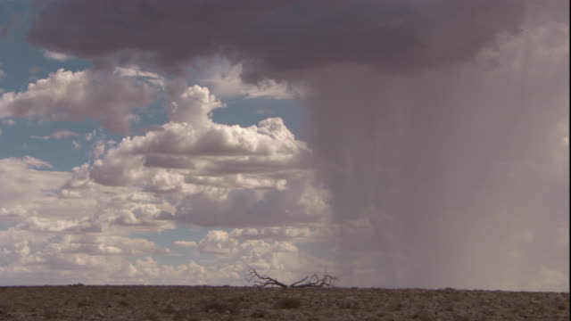 A sheet of rain falls on the Australian outback, New South Wales. Available in HD.
