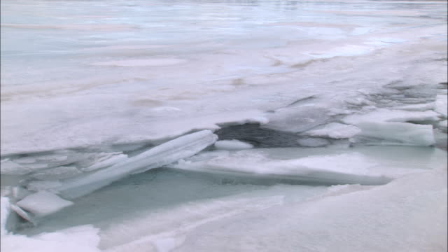 sheets of ice cover the surface of tagish lake. - whitehorse stock videos and b-roll footage