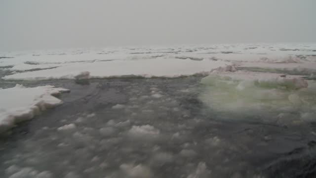 vídeos y material grabado en eventos de stock de sheets of ice float on the surface of the southern ocean. available in hd. - pasear en coche sin destino