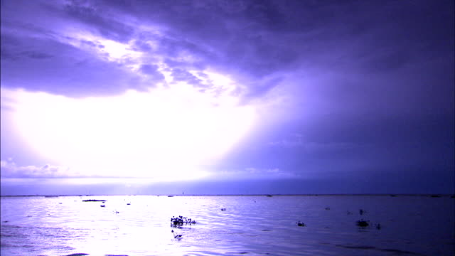 sheets of lightning flash in a purple sky. - fuel and power generation stock videos & royalty-free footage