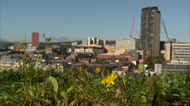 south yorkshire sheffield ext wide shot of sheffield skyline seen from sheffield amphitheatre / various wide shots of sheffield cityscape including... - steeple stock videos & royalty-free footage
