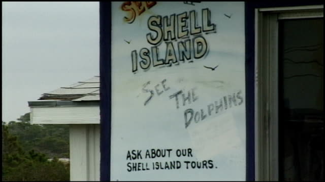 shell island see the dolphins sign in panama city, florida - cetacea stock videos & royalty-free footage
