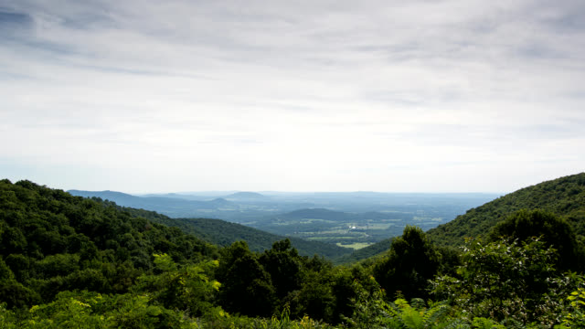 Shenandoah Valley in Summer
