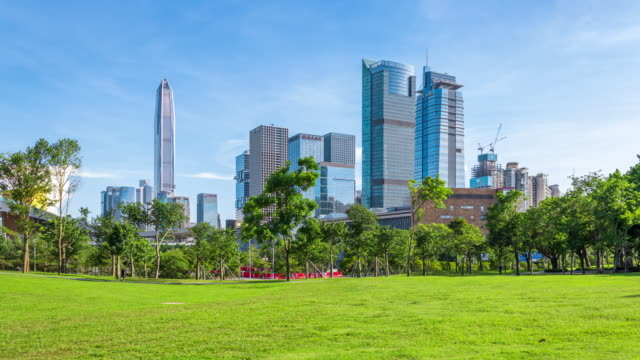 t/l ws zo shenzhen futian district skyline and lawn in the park/shenzhen,china - economy stock videos & royalty-free footage