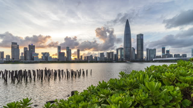 t/l ws shenzhen talent park and houhai financial district with moving clouds/shenzhen,china - sustainable resources stock videos & royalty-free footage