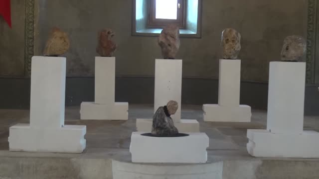 shepherd ahmet aslan has developed his own niche collection that has now gone on display in a museum -- stones that resemble humans and animals -- in... - working animals stock videos & royalty-free footage