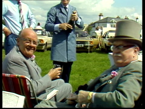 epsom champagne drank by 4 people in morning dress pull out ms great dane and bottle of champange cs glasses and champers toast ls zoom in picnic at... - straw hat stock videos & royalty-free footage