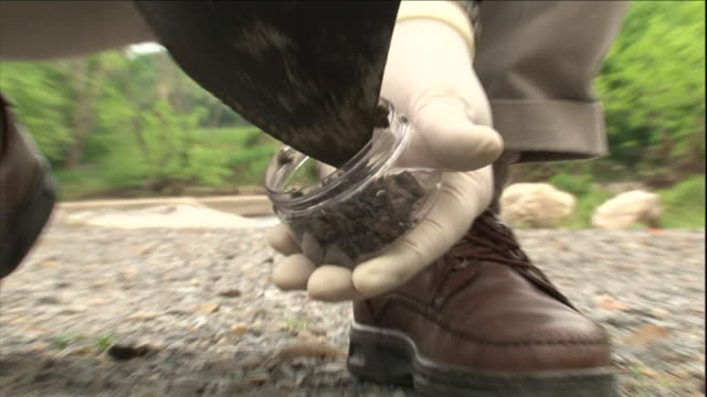 a sheriff collects a soil sample from a crime scene. - forensic science stock videos & royalty-free footage