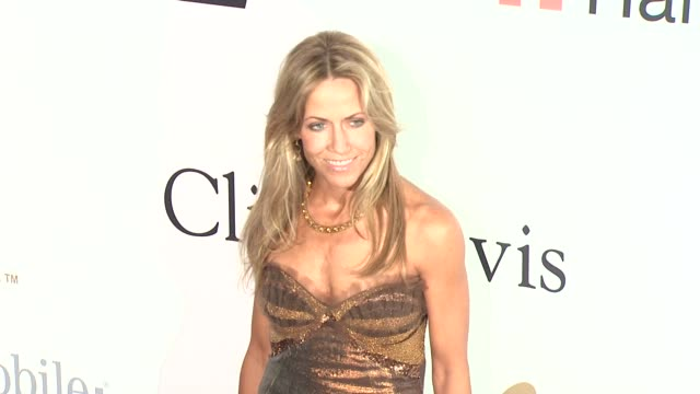 sheryl crow at the pregrammy gala salute to industry icons with clive davis at los angeles ca - sheryl crow stock videos and b-roll footage