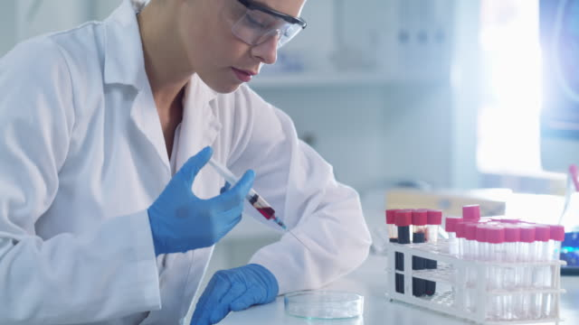 she's always busy testing samples in the lab - pathologist stock videos & royalty-free footage