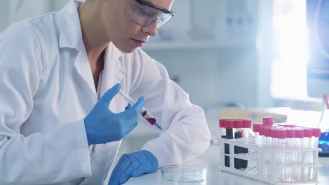 vídeos y material grabado en eventos de stock de siempre está ocupada probando muestras en el laboratorio - patólogo