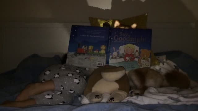 shiba inu reads this kid a bedtime story and even uses a flashlight! - bedtime stock videos & royalty-free footage