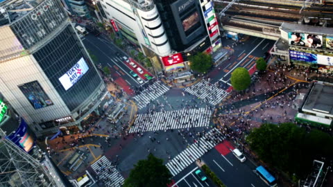 shibuya crossing aerial view tokyo japan - shibuya crossing stock videos & royalty-free footage