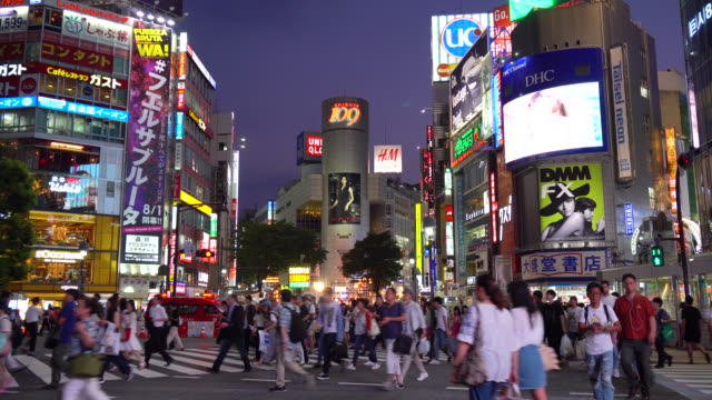 shibuya crossing at night - tokyo japan stock videos & royalty-free footage