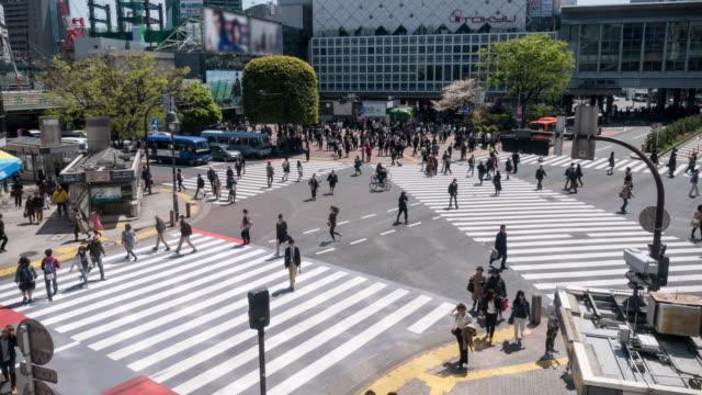vídeos de stock, filmes e b-roll de shibuya cruzando em tóquio no japão - sinais de cruzamento