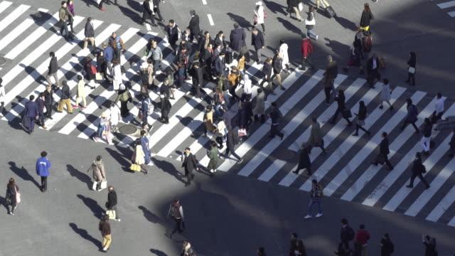 vídeos de stock, filmes e b-roll de shibuya, atravessando o tempo do dia - pedestre