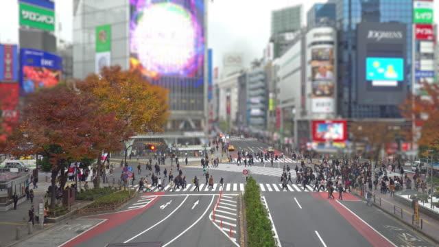 渋谷横断一日のティルト シフト効果時間 - 横断する点の映像素材/bロール
