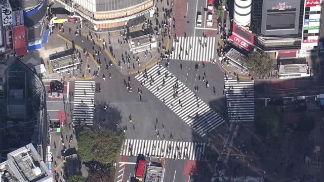aerial, shibuya crossing during covid-19, tokyo, japan - road junction stock videos & royalty-free footage