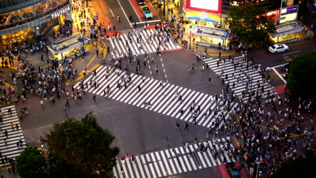 shibuya crossing from top in tokyo - pedestrian stock videos & royalty-free footage