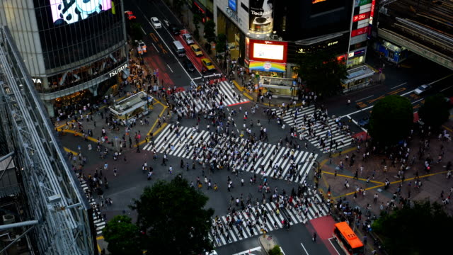 shibuya crossing from top in tokyo - crosswalk stock videos & royalty-free footage