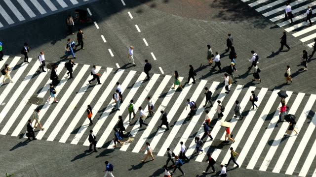 shibuya crossing from top in tokyo - square composition stock videos & royalty-free footage