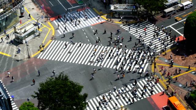 東京で上から渋谷の交差点 - 横断する点の映像素材/bロール
