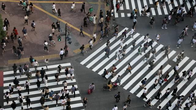 東京都内の渋谷の交差点 - 十字路点の映像素材/bロール