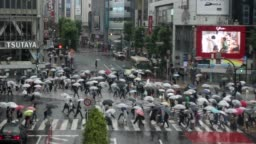 Shibuya crossing in rainy day