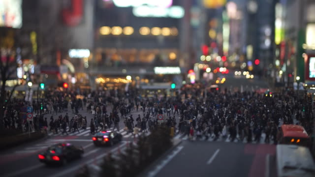 shibuya crossing in the evening (tilt-shift/real time) - crosswalk stock videos & royalty-free footage